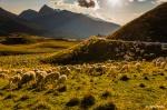 Hans-Kruse-PODAS-Dolomites-4